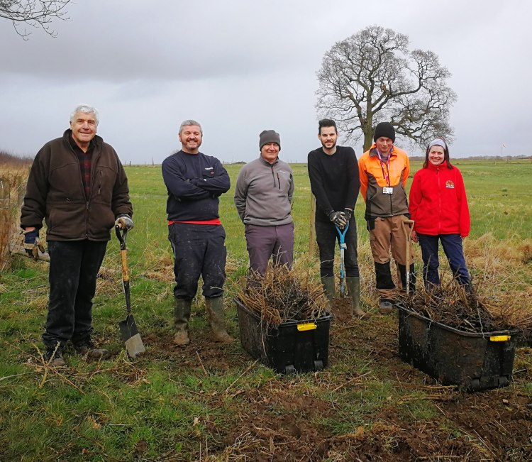 siemens-and-tree-planting-at-forest-of-hearts-2